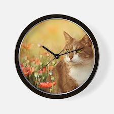 Cat on poppy field Wall Clock