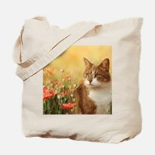 Cat on poppy field Tote Bag