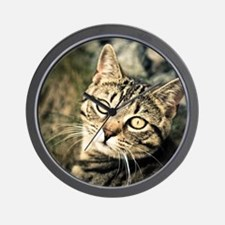 Domestic Cat Wall Clock