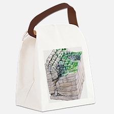 illustration showing development  Canvas Lunch Bag