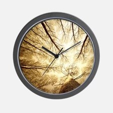 Surrounded by Tall Trees, low angle sho Wall Clock