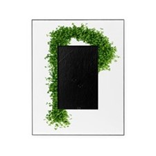 Letter 'p' Picture Frame