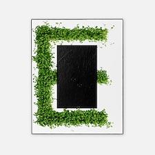 Letter 'e' Picture Frame