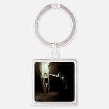 Harassment - Bela Lugosi Series V Square Keychain