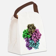 Shiga-like toxin I subunit molecu Canvas Lunch Bag