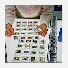 Photo editor choosing slide photograp Tile Coaster