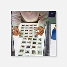 "Photo editor choosing slide Square Sticker 3"" x 3"""