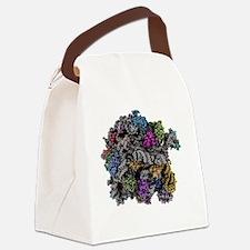 Ribosomal subunit, molecular mode Canvas Lunch Bag