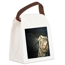 Funny Cat face Canvas Lunch Bag