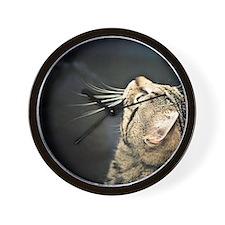 Funny Tabby cat Wall Clock
