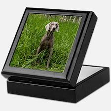 Portrait of Dog Keepsake Box