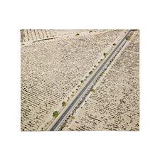 Rural Road in Deserts Throw Blanket