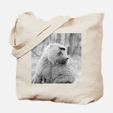 African baboon Tote Bag