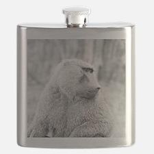 African baboon Flask