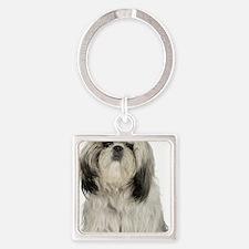 Portrait of Tibetan terrier puppy Square Keychain