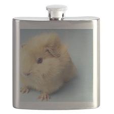 Cream colored Guinea pig Flask