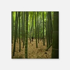 """Ancient bamboo grove with s Square Sticker 3"""" x 3"""""""