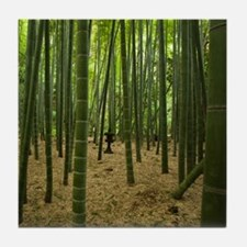 Ancient bamboo grove with stone lante Tile Coaster