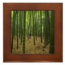 Ancient bamboo grove with stone lanter Framed Tile