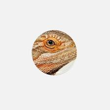 Bearded dragon close up Mini Button