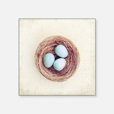 "Bird nest with blue baby ro Square Sticker 3"" x 3"""