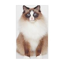 Big Furry Cat Decal