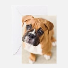 Boxer puppy looking up at camera. Greeting Card
