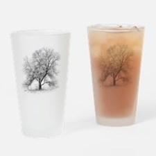 A black and white image of an old B Drinking Glass