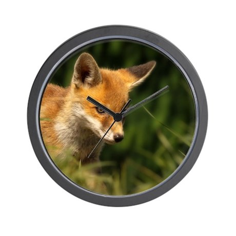 A young Red Fox cub peering through a g Wall Clock