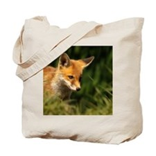 A young Red Fox cub peering through a gap Tote Bag