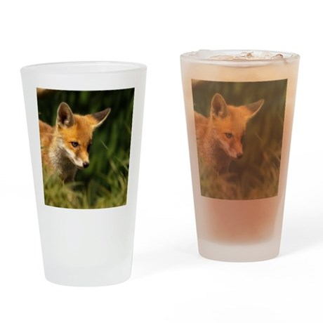 A young Red Fox cub peering through Drinking Glass