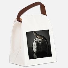 Bearded dragon on rock in Studio  Canvas Lunch Bag
