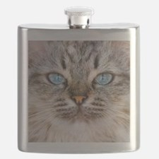 Beautiful blue eyes of a longhaired cat Flask