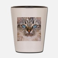 Beautiful blue eyes of a longhaired cat Shot Glass