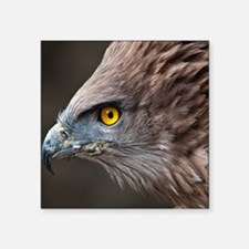 "Close up of eagle. Square Sticker 3"" x 3"""