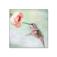 "Close up of hummingbird in- Square Sticker 3"" x 3"""