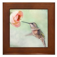 Close up of hummingbird in-flight and  Framed Tile