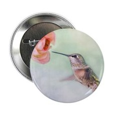 """Close up of hummingbird in-flight and 2.25"""" Button"""