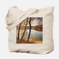 Birch trees and reflected autumn colors a Tote Bag