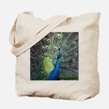 Close up of peacock showing its beautiful Tote Bag