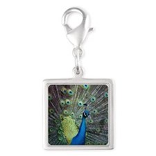 Close up of peacock showing i Silver Square Charm