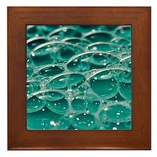 Colorful bubbles. Framed Tile