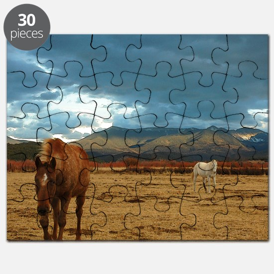 Brown horse and white horse in dry winter m Puzzle
