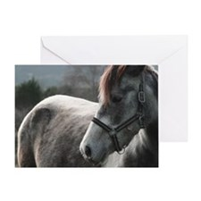 Close-up of Horse Greeting Card