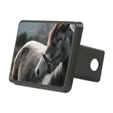 Close-up of Horse Hitch Cover