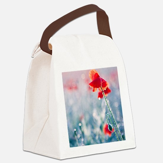 Field of red poppies in flower wi Canvas Lunch Bag
