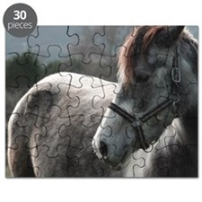 Close-up of Horse Puzzle