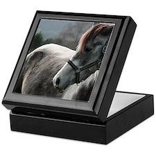 Close-up of Horse Keepsake Box