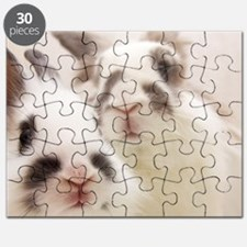 Close up of Rabbits Puzzle