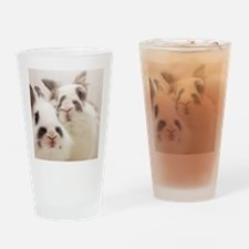 Close up of Rabbits Drinking Glass